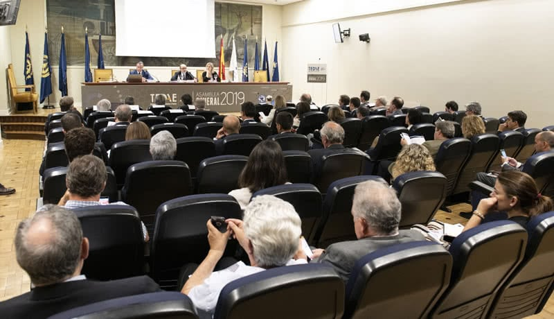Asamblea General de TEDAE 2019